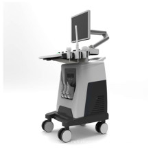 DW-C80 3D 4D trolley color doppler ultrasound machine price ultrasound scanner