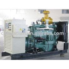 25KW biogas generator