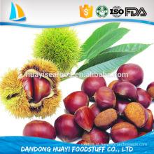 Bom preço castanha fresca para venda em Dandong atacado castanhas a granel preço