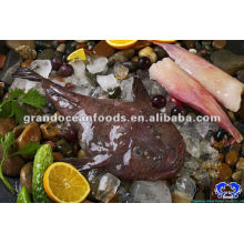 frozen monkfish tail meat