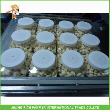 Китай Дешевые хранения очищенный чеснок / трещины чеснок для оптовой продажи