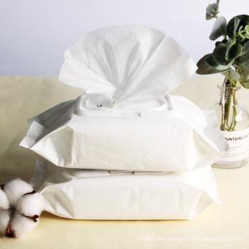 OEM Factory Antibacterial Wet Wipes 80pcs Disinfectant