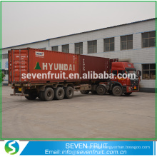 Seven Fruit supply walnut kernel raw amber for sale in bulk sale