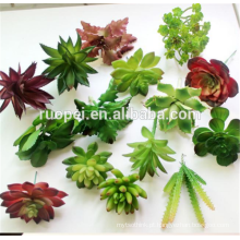 2016Hot vender plantas artificiais plantas pequenas plantas suculentas potted decor mini plantas