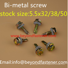 Bulding Screw