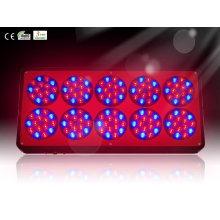 Hydroponic Led Grow Plant Light With Color Red, Black Available For Greenhouse Rcapo10