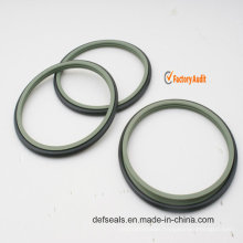Teflon Rotay/Shaft Seals for Hydraulic Cylinder