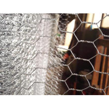 Super Quality Hexagonal Wire Mesh