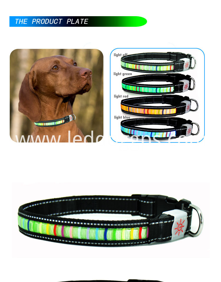 Led Light-Up Dog Collar