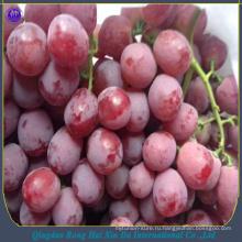 китайский фрукт свежий красный виноград красный глобус виноград красных сортов винограда экспортер