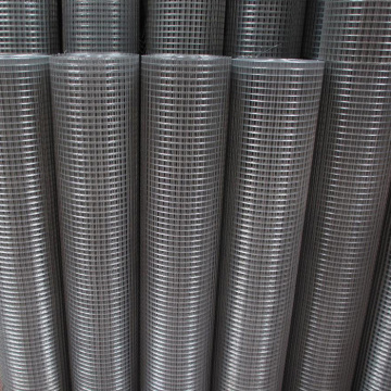 welded wire mesh roll with high quality