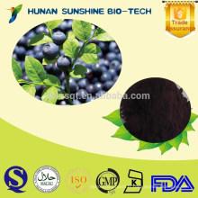 herbes naturelles 25% Anthocyanidin / poudre européenne d'extrait de myrtille Poudre chinoise d'extrait de myrtille