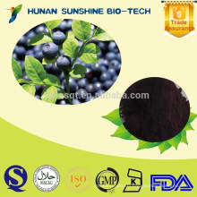 natural herbs 25% Anthocyanidin /European Bilberry Extract Powder Chinese Bilberry Extract Powder