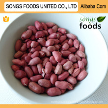 Songs Foods Peanut Kernels Export To Egypt
