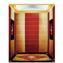 Fjzy-Elevator (FJ8000-1) Elevador Pasajero Fjzy-206