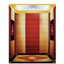 Fjzy-Elevator (FJ8000-1) Elevator Passenger Fjzy-206