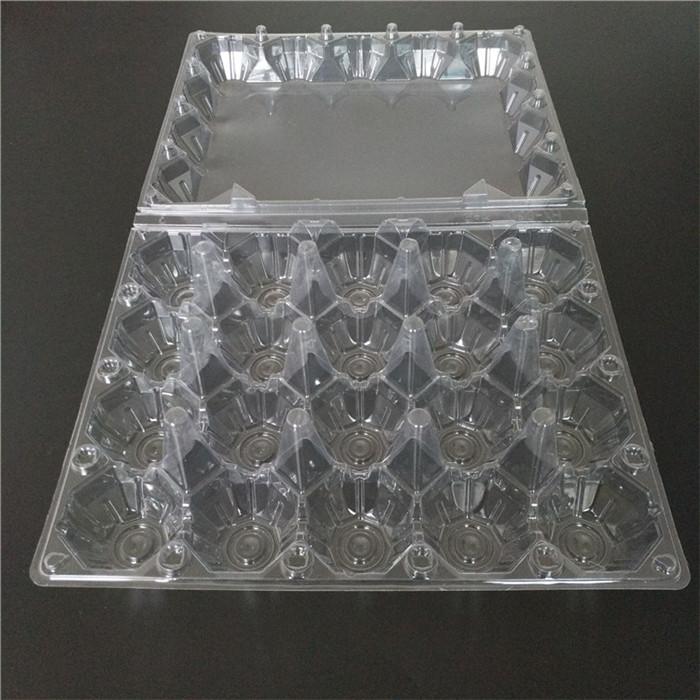 Transparent Plastic Chicken Egg Tray