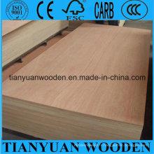Le meilleur contreplaqué commercial / contreplaqué stratifié pour des meubles
