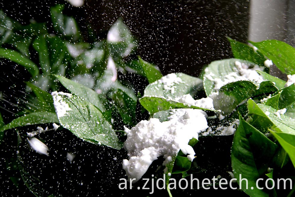 Snow Spray Christmas Favores