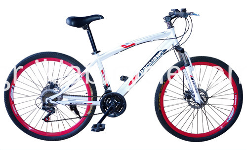 Disc-Brake Mountain Bike