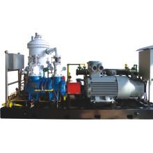 Profession Manufacture of Methane Gas Screw Compressor Unit: Lgm8/0.65-1.4
