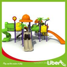 Terrain de jeux extérieur fantastique Kids Facility Slide and Climbing