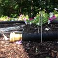 Facile Gardener en Acier et Sod Staples