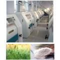 Planta del molino de la harina del trigo 100-500tpd / fresadora de la harina