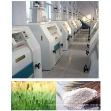 100-500 тонн пшеничной муки завод / мукомольный станок