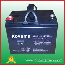 12V33ah Elektrische Motive Power Akku Np33-12 Deep Cycle Batterien