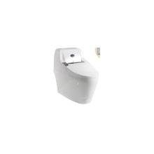One Piece inodoro de pie autolimpiante inteligente urinario inodoro / baño sanitario cerámica Wc inodoro