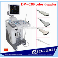 Machine d'ultrason de 4D et machine à ultrasons de Doppler de couleur DW-C80