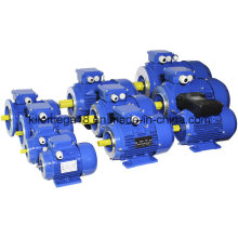 3 Phase Asynchronous Motor (Y2 series) for Industry