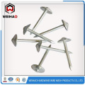 BWG 9x2.5 '' UMBRELLA HEAD ROOFING NAIL