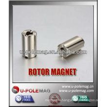 Neodymium Rotor Magnets Customerized