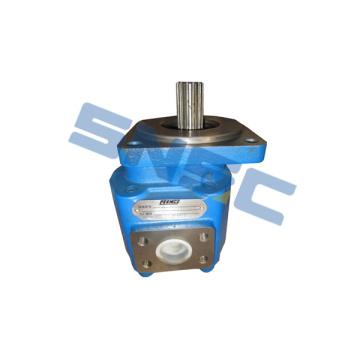 SEM 650B Loader W067100000B Gear Pump