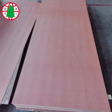 Low price for Veneer MDF Sheets sapele veneer MDF board 18mm for furniture use export to Iraq Importers