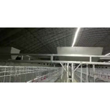 Super Sale Low price Factory Supply battery chicken layer cage for pakistan farm uganda  automatic poultry cage