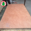 15 mm Bintangor BBCC Plywood for furniture