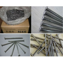 Common Wire Nail Iron Nail all sizes