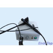 Veterinär-Gastroskop (VET-7915)