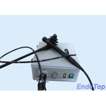 Veterinary Gastroscope (VET-7915)