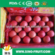 Großhandel frische Apfelfrucht nennt alle trockenen Früchte