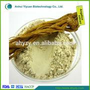 buy radix angelica sinensis extract Powder