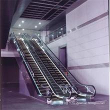 Vvvf Drive Indoor Escalator résidentiel Coût