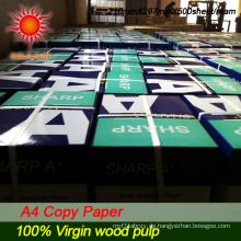 für die Papierherstellung 100% Holzmasse (CP0015)