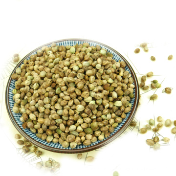 Hemp Seeds Make Oil