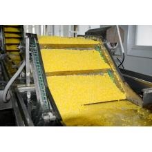 Best Sales Good Quality IQF Frozen Sweet Corn
