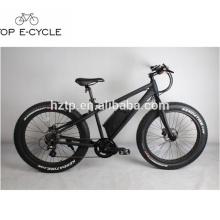 Für den Verkauf Down-Tube-Lithium-Batterie elektrische Fat Bikes zentralen Motor Fett E Bike China