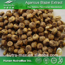 Agaricus Extract, Agaricus Extract Polysaccharides, Agaricus Extract Powder with Low Price